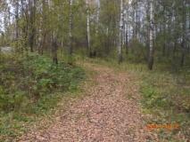 СНТ, 12,22сот., крайний к лесу с лесными деревьями, дер. Рогово, Подольский р-н, Варшавское шоссе,или Калужскому шоссе 59км