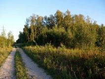 Симферопольское шоссе км от МКАД, дер. Сынково, Подольский р-н, участок 10-соток, 32 км от МКАД, газ, свет, по границе
