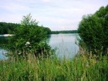 Калужское или Варшавское шоссе 63 км от МКАД, д. Ильино, рядом ПГТ Рогово, Подольский р-он, участок 18 сот., уч-к граничит с большим водохранилищем