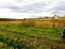 Симферопольское ш., 86 км от МКАД, в д. Съяново- 2 , Серпуховского р-на, земельный участок 12 соток оформлен в собственность. Река Нара в шаговой доступности, 200м